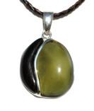 Jewel Baltic Amber Petrified Wood Silver Pendant