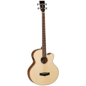 Tanglewood TWAB1-CE  Evolution Acoustic Bass
