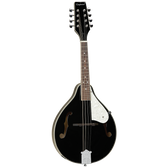 Tanglewood TWMTBKP Union Series Mandolin Black