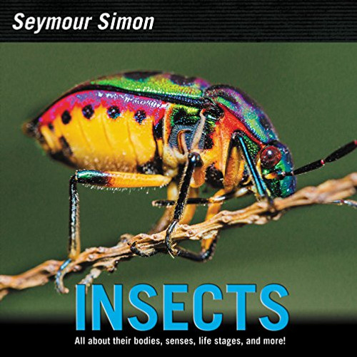 Insects by Seymour Simon