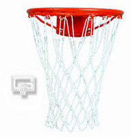 Gared Sports 13 inch Basketball Hoop Practice Ring 13P