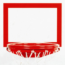 Bison Basketball Replacement Shooter's Square Backboard Target