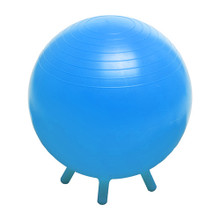 Stability Ball with Feet 55 CM