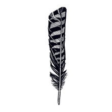 Hawk Feather Temporary Tattoo