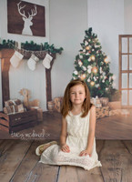 Christmas Holiday Fireplace scenic Photography Backdrop - Item 3030