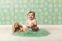 Daisy Flowers Blue Wood Floral Photography Backdrop - Item 3039