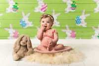 Easter Bunny Egg Pastel Green Wood Children's Easter Portrait Backdrop - Item 3043