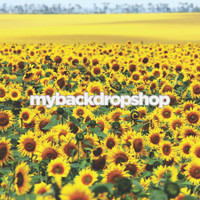 Field of Sunflowers Photography Backdrop - Item 3064