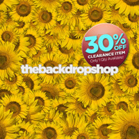 CLEARANCE - VINYL - 6ft x 5ft Photography Floordrop or Backdrop - Sunflower Photography Prop - Item 107