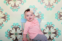 Vinyl Photography Backdrop - Poly Paper Backdrop Option Too - Damask Backdrop for Weddings or Babies - Item 168