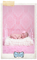 Elegant Pink Damask Studio Photography Backdrop - Item 171