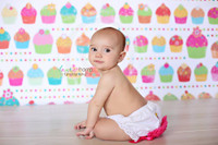 Cupcake Photo Session Prop - Backdrop for Kids Photography Session - Vinyl Portable Back Drop  - Item 189
