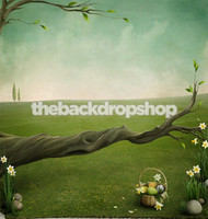 Photographic Background - Easter Theme Backdrop for Pictures - Childrens Easter Portrait Back Drop - Item 250