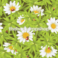 Daisy Photography Backdrop Floral  - Item 257
