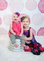 Pink Dot Pattern Photo Backdrop for Photographers - Girl's Photography Backdrop - Item 451