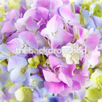 Fancy Hydrangea Print Spring or Easter Background  - Item 475