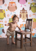 Owl Theme Photography Backdrop for Kid's  - Item 574