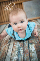 Rustic Barnwood Floor Drop for Portraits - Distressed Wood Wall Background for Studio Photos - Item 605