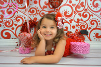 Red and White  Photography Backdrop - Valentines Day Theme Portrait Prop - Item 639