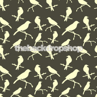 Trendy Bird Wallpaper Backdrop - Item 687