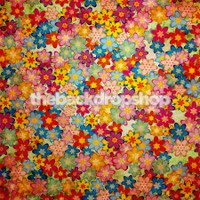Pretty Floral Photography Backdrop - Bohemian Photography Backdrop for Teen Girls - Item 705