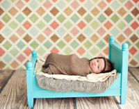 Pastel Photography Backdrop for Newborn Studio Portraits  - Item 999