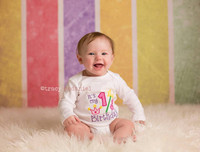 Multi Color Stripe Backdrop for Photography  - Item 1540