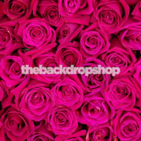 Dark Pink Rose Backdrop for Photography - Newborn or Wedding Photo Back Drop - Item 1560