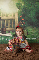 Childrens Scenic Photography Backdrop - Item 1634