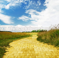 Yellow Brick Road Backdrop - Wizard of Oz Photography Backdrop - Item 1636