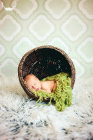Green Pattern Photo Background for Pictures - Item 1690