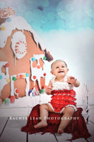 Gingerbread House Photography Backdrop - Item 1762