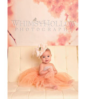 Pink Flower Photography Backdrop - Cherry Blossom Photo Backdrop - Spring Backdrops for Photography - Item 1822