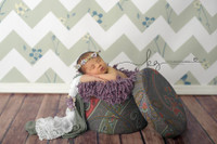 Shabby Blue Floral Chevron Backdrop for Newborns - Item 1988