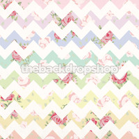 Pastel Rainbow Floral Chevron Photography Backdrop - Item 2003