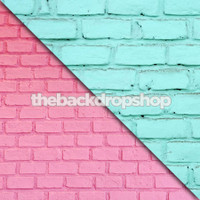 Turquoise Blue Brick / Bubblegum Pink Brick - Items 586 & 421