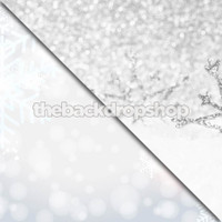 Snow and Snowflakes / Christmas Photoshoot - Item 660 & 0962