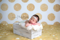 Gold Glitter Dot Backdrop - Polka Dot Photo Background - Holiday Back Drop - Exclusive Design - Item 2120