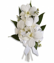 """White dendrobium orchids with seeded eucalyptus and Italian ruscus. Approximately 4 1/2"""" W x 7 1/2"""" H"""