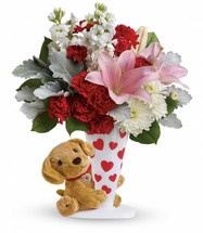 For guaranteed hugs, send this furry friend! Valentine's Day is cuddlier than ever thanks to this precious pup and his romantic bouquet of breathtaking pink lilies accented with white and red blooms.