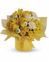 As refreshing as lemon sherbet, this sunny array of flowers in a yellow gift box tied with a matching ribbon makes a tantalizing gift for someone with taste. They'll certainly admire yours. The cheerful bouquet includes yellow asiatic lilies, yellow spray roses, crème roses, yellow daisy spray chrysanthemums and white button spray chrysanthemums accented with fresh greenery. Delivered in a yellow gift box with matching water-resistant tissue and ribbon. Orientation: All-Around