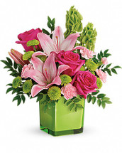 They'll fall in love with this pretty, playful bouquet! Pink roses and lilies look oh-so-lovely with elegant bells of ireland and presented in our exclusive vibrant green Color Splash cube! It's a fresh mix they'll adore for any occasion. This refreshing arrangement features dark pink roses, pink asiatic lilies, pink miniature carnations, bells of ireland, green button spray chrysanthemums, and huckleberry. Delivered in Teleflora's Color Splash cube. Orientation: One-Sided