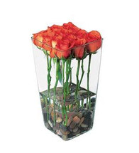 Stunning, elegant and extraordinary, perhaps very much like that special someone you know. Twelve foliage-free orange roses with river rocks arrive inside of a flared clear glass vase.