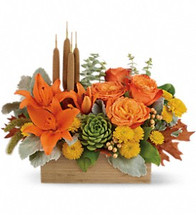 Zen Harvest! You can't help but fall into a deep state of relaxation when you feast your eyes on this striking centerpiece. This artistic arrangement will enchant with shades of  peach, orange and green - combining roses, lilies and even a succulent plant! Hand-delivered in a natural-toned bamboo rectangle.
