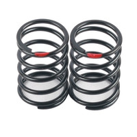 ARC R10 Shock Spring 0.36 Red (2pcs)