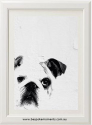 British Bulldog Print