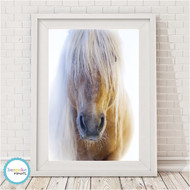 A3 Sale - Palomino Horse - Free Shipping
