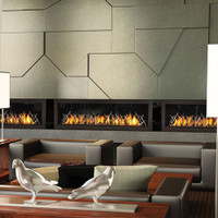 NAPOLEON LHD62 MODERN LINEAR GAS FIREPLACE