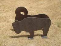 Full Scale Buffalo