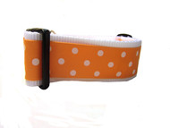 """Apricot Spot 1.5 or 2"""" wide"""